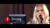 Afbeelding van The Common Linnets and Friends in Concert - zondag