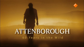 Natuur Op 2: David Attenborough: 60 Years In The Wild - Natuur Op 2: David Attenborough: 60 Years In The Wild