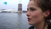 Afbeelding van The Road to IDFA