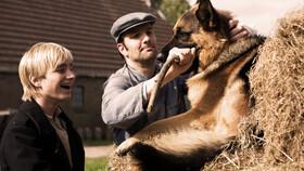 Afbeelding van aflevering: Snuf de Hond in oorlogstijd (3)