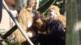 Afbeelding van aflevering: De apenfruitmand