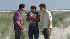 """Afbeelding van aflevering: """"Uniek bezoek aan Rottumerplaat"""""""