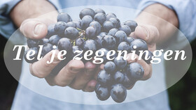 Afbeelding van aflevering: Nederland Zingt op Zondag