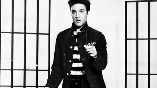 Afbeelding van aflevering: De Elvis-Quiz