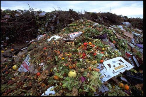 Brandveiligheid en voedselverspilling