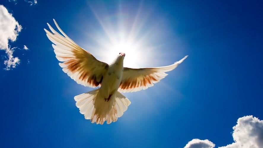 Afbeelding van aflevering: Wat is lasteren van de Heilige Geest?