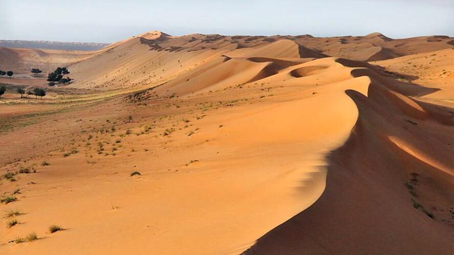 Afbeelding van aflevering: Zegen in de woestijn