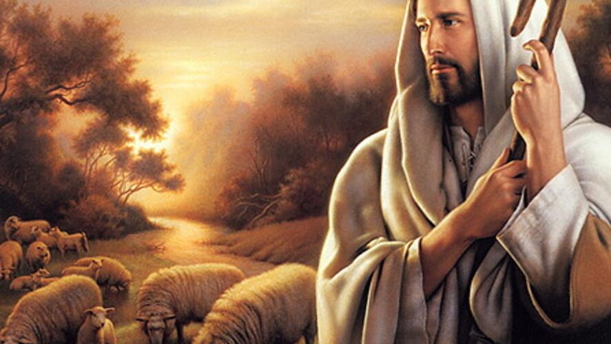 Afbeelding van aflevering: De goede herder