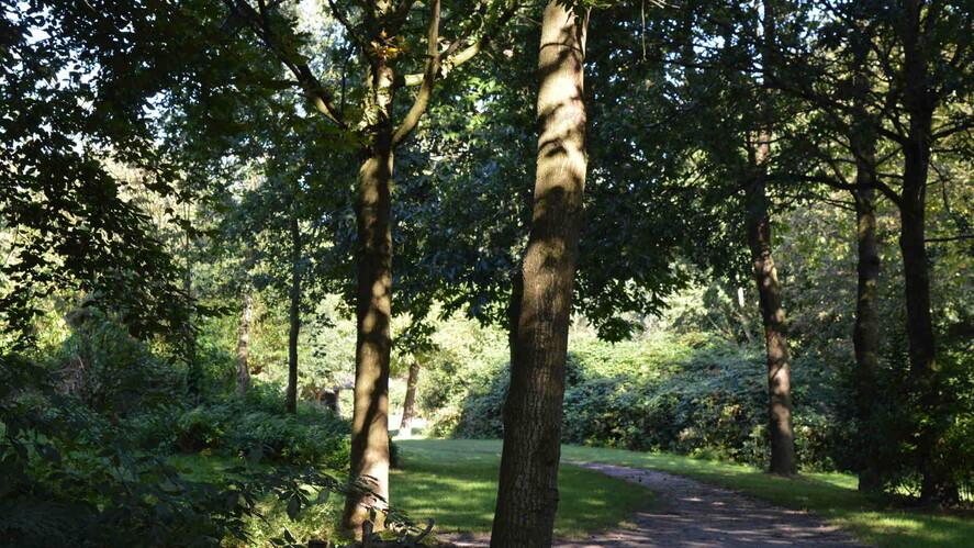 Afbeelding van aflevering: Thuis in de natuur van Lelystad