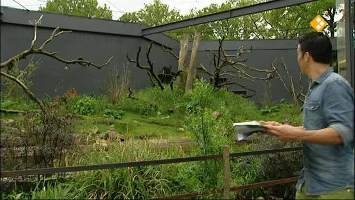 Schooltv geoclips klimaatzones van de wereld - Tv josephine huis van de wereld ...