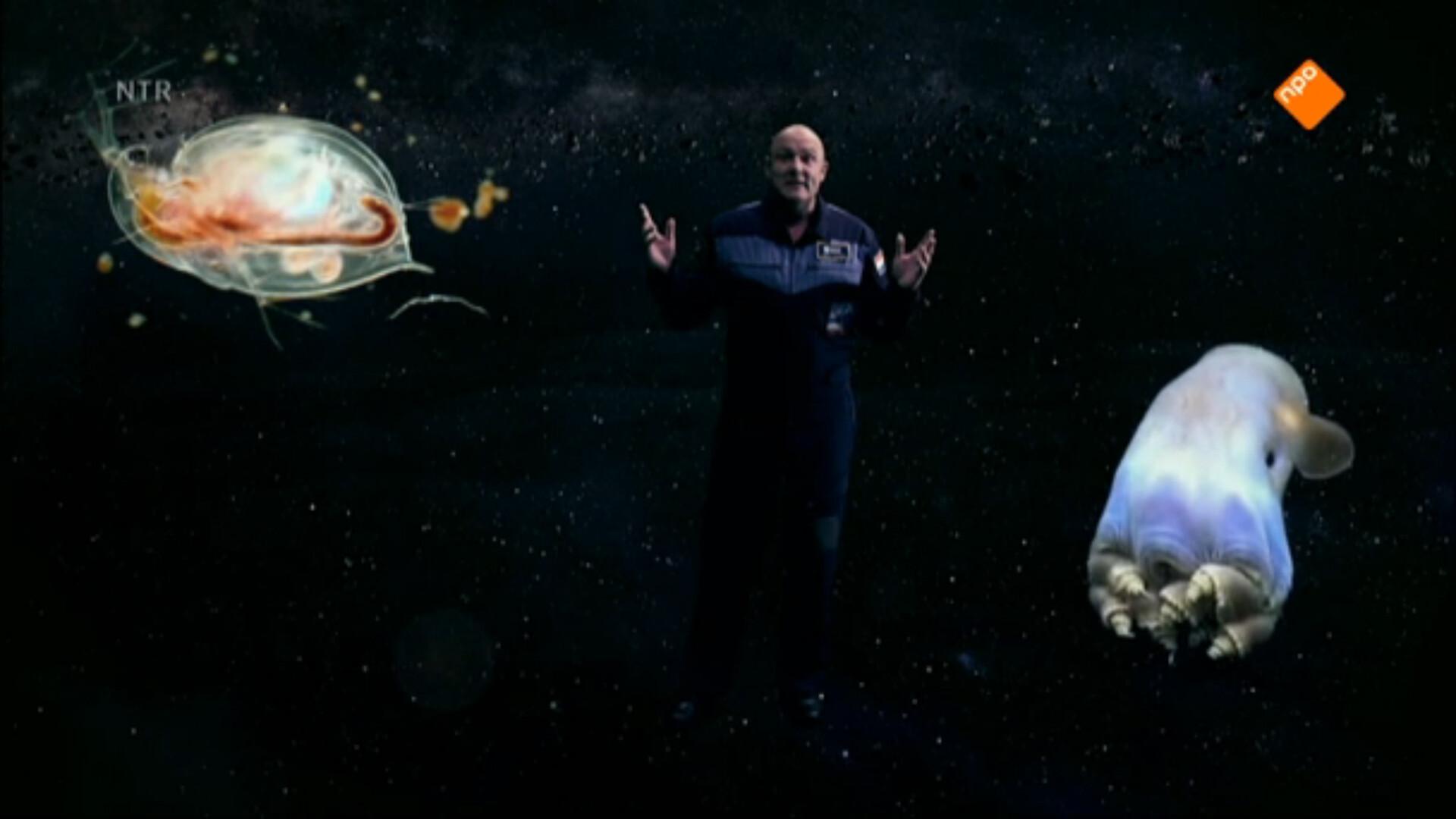 Schooltv ontdek de ruimte met andr kuipers buitenaards leven - Hoe hij zijn teen ruimte organiseren ...