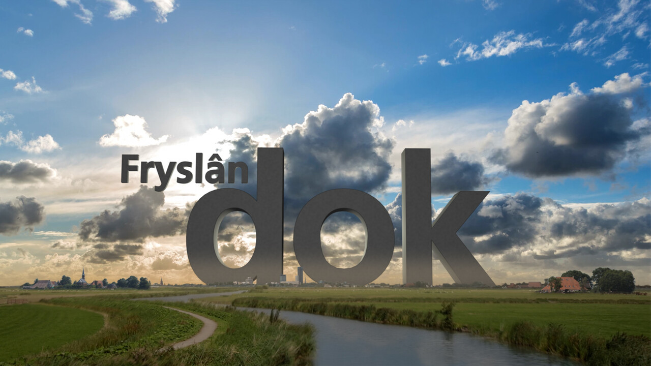 Fryslân Dok - Dansen Met De Bal, 100 Jaar Abe Lenstra