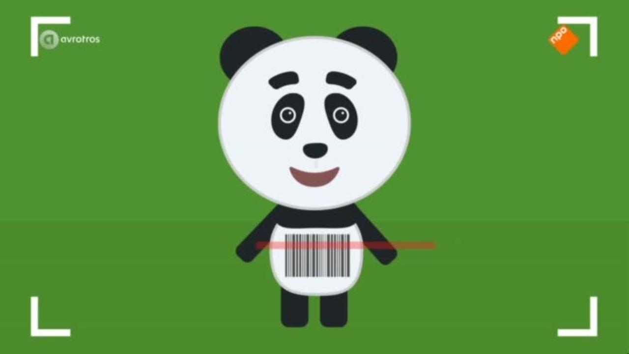 Het Pandajournaal - Het Pandajournaal Marathon