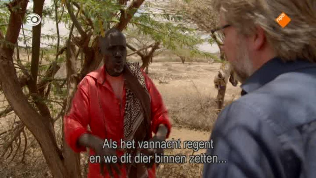 Metterdaad - Noodhulp, Afrika