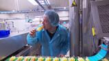 Hoe worden waterijsjes gemaakt?: Bevroren limonade op een stokje