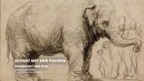 De wilde dieren van Rembrandt: Levensechte leeuwen en olifanten