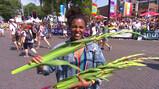Waarom krijgen wandelaars van de Nijmeegse Vierdaagse gladiolen?: Bloemen bij de finish