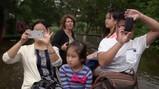 Chinese toeristen in Giethoorn