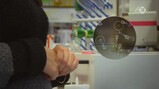 De Kennis van Nu in de klas: Bacteriofagen versus bacteriën