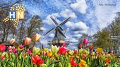 Hallo Nederland