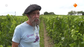 Gorts Wijnkwartier