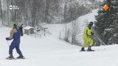 De Adriaans im Schnee