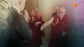 De Boeddhistische Blik