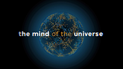 Afbeelding van The Mind of the Universe