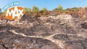 Groeten van MAX Dodelijke bosbranden Portugal en ondoorzichtige prijzen