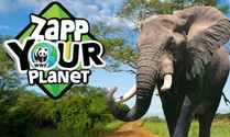 Zapp Your Planet: Expeditie Olifant