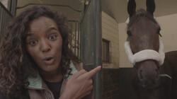 Het Klokhuis: Paardenrevalidatie