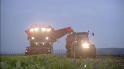 De bietenrooimachine: Alle suikerbieten de grond uit