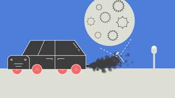 Waarom hebben steeds meer mensen hooikoorts?: Last van pollen door schoner leven en uitlaatgassen