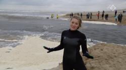Proefkonijnen in de klas: Kun je surfen op een dijkdoorbraak?