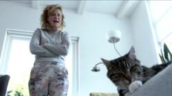 De Buitendienst: De kat: huisdier of roofdier?