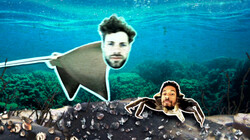 Waarom wordt de rog bedreigd?: Overbevissing en klimaatverandering