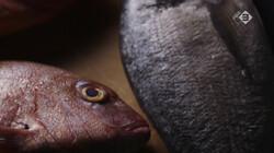 Keuringsdienst van Waarde in de klas: Dode vis