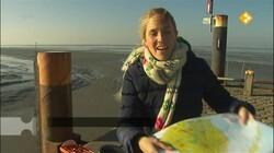 Rondje Nederland: Zee en eilanden