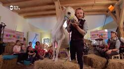 Apennoten XL: Paard - Ritme