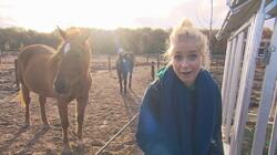Het Klokhuis: Paardenrusthuis