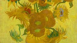 Dit ben ik: Vincent van Gogh: De zonnebloemen van Vincent uit Arles (Afl. 3)