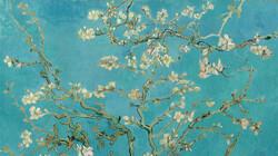 Dit ben ik: Vincent van Gogh: De amandelbloesem van Vincent uit Saint-Rémy (Afl. 4)