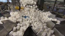 Hoe worden marshmallows gemaakt?: Van suiker en lucht tot zoet spekje
