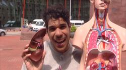 Hoe werkt orgaandonatie?: Beter door een orgaan van iemand anders