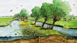 Het ontstaan en de inrichting van Nederland : Dijken en inpoldering in de middeleeuwen