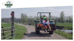 De Buitendienst: De Grutto: koning van de Nederlandse weilanden
