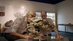 Onderzoek naar meteorieten: De risico's van een meteorietinslag