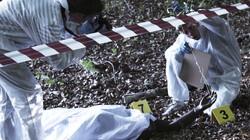 Hoe helpen varkens bij politieonderzoek?: Het tijdstip van overlijden vaststellen dankzij dode varkens