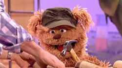 Grote hamer: Stukje uit Sesamstraat