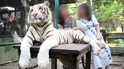 Is het oké om selfies te maken met dieren?: Dierenleed door wildlife selfies